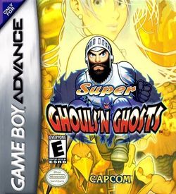 Super Ghouls 'N Ghosts ROM