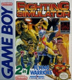 Fighting Simulator 2in1 - Flying Warriors ROM