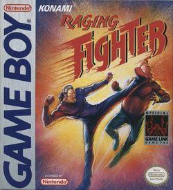 Raging Fighter ROM