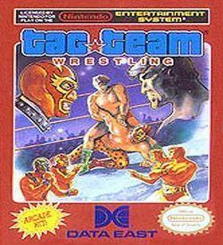 Tag Team Pro-Wrestling ROM