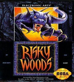Risky Woods ROM