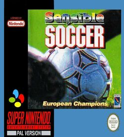Sensible Soccer (31010) ROM