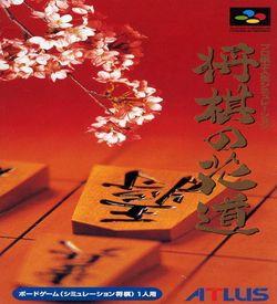 Simulation Pro Yakyu ROM