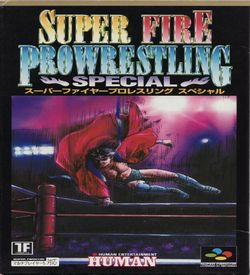 Super Fire Pro Wrestling Special ROM