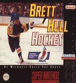 Brett Hull Hockey ROM