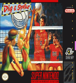 Dig & Spike Volleyball ROM