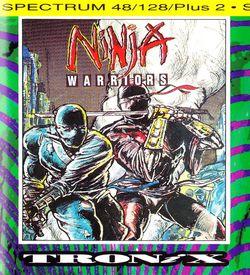 Ninja Warriors Again, The ROM